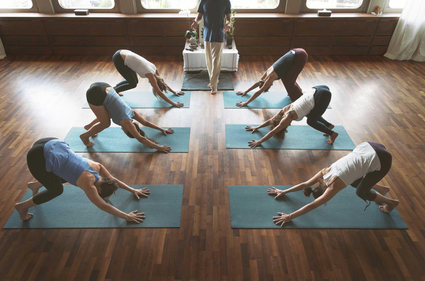 Yoga Kurs Aufbaukurs Yoga Leipzig