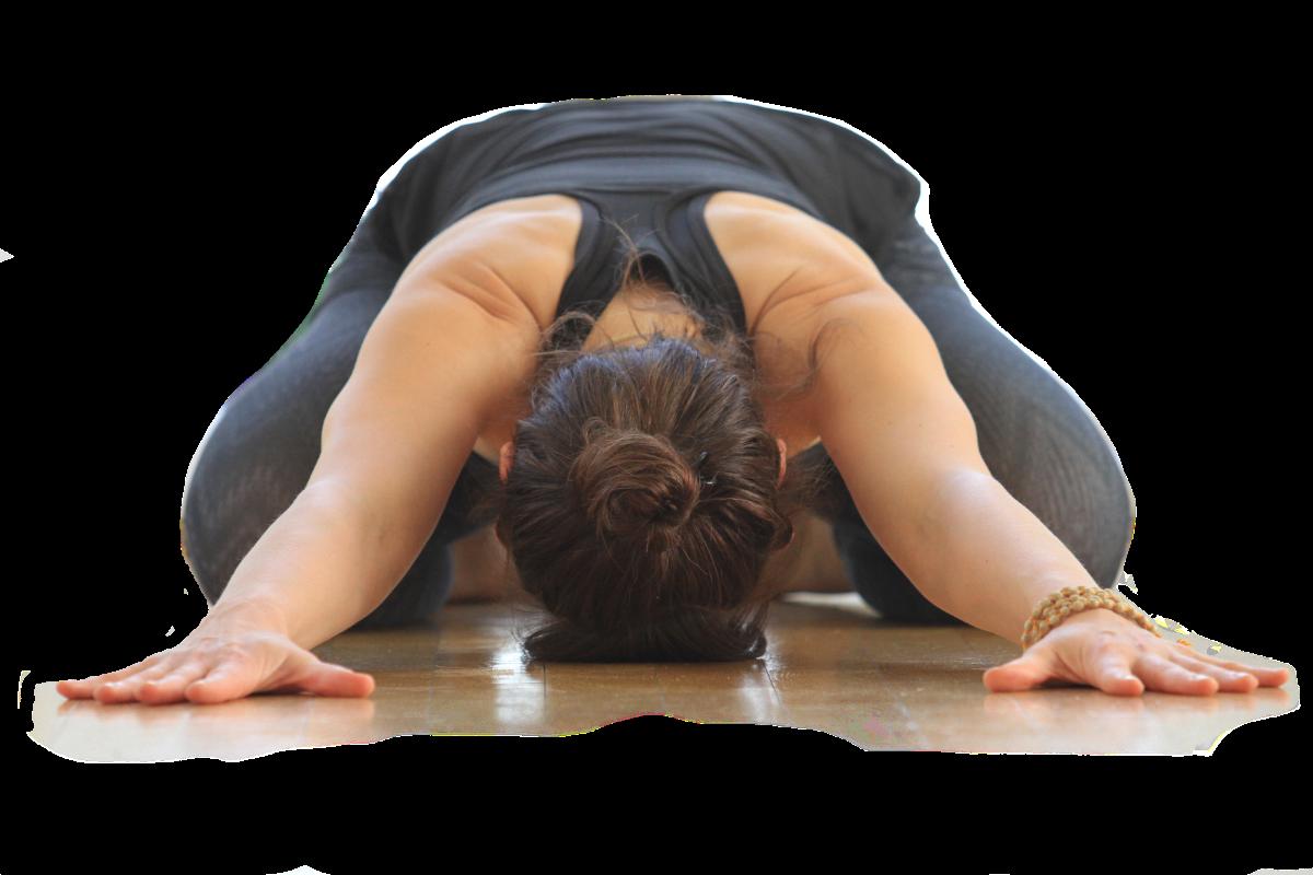 Yogakurse Anfängerkurs